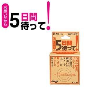 排水口ぬめり取り【お願いだから5日間待って!】3箱セット(1箱20g×2個入り)