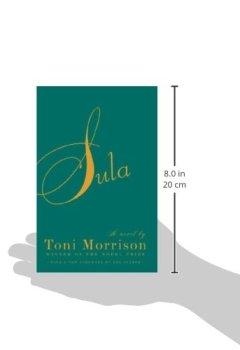 Livres Couvertures de Sula.