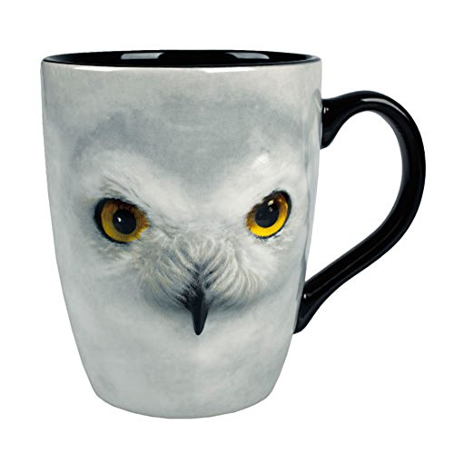 Wizarding World of Harry Potter : Sculpted Ceramic Hedwig Owl Coffee Mug Cup