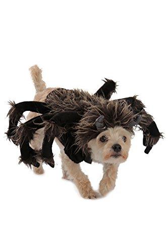 Dachshund Spider Costume