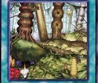 遊戯王カード 【大樹海】 DE03-JP103-N ≪デュエリストエディション3 収録カード≫