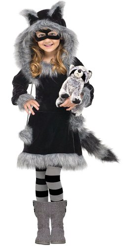 Sweet Raccoon Costume: Toddler or Girls Halloween Costume WB (4-6 with Bracelet for Mom)