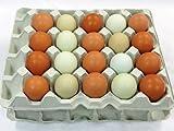 島根県名産品 生卵 しまづの「こだわり」卵(赤卵32個アローカナの卵8個入り)