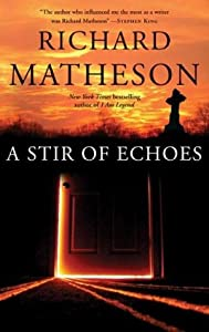 "Cover of ""A Stir of Echoes"""