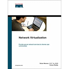 Network Virtualization (Networking Technology)
