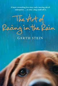 "Cover of ""The Art of Racing in the Rain"""