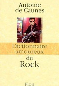 Livres Couvertures de Dictionnaire Amoureux Du Rock