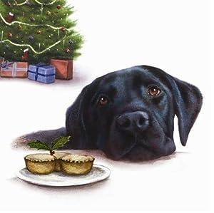 Black Labrador Retriever Dog Christmas Cards Xmas MINCE