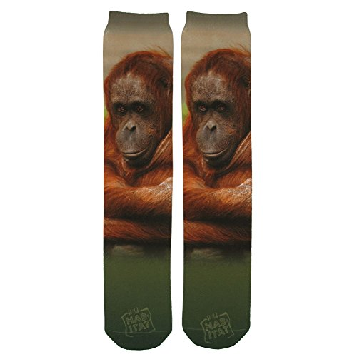 Wild Habitat Orangutan Sublimation Tube Socks