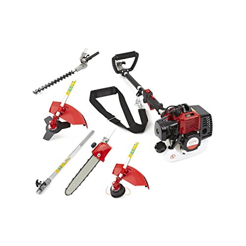 41VUqCC8swL - BEST BUY #1 Trueshopping® 62cc Petrol Multi Tool Long Reach Multi Function 5 In 1 Garden Power Tool Including: Hedge Trimmer, Strimmer, Brushcutter, Chainsaw Pruner & Free Extension Pole 2-Stroke 2.KW / 3.5HP