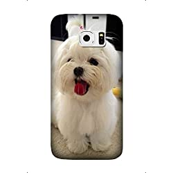 Samsung Galaxy S7 Edge Case Cute Maltese Dog Pet Pattern Cover Skin Shell for Samsung Galaxy S7 Edge