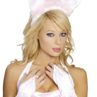 Top 10 Playboy Bunny Costumes - and Then Some