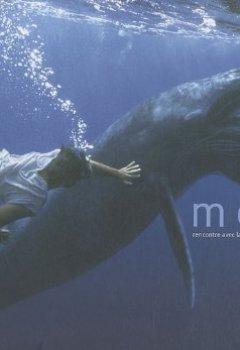 Livres Couvertures de Moana : Rencontre avec la biodiversité sous-marine polynésienne
