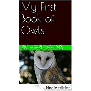 My First Book of Owls