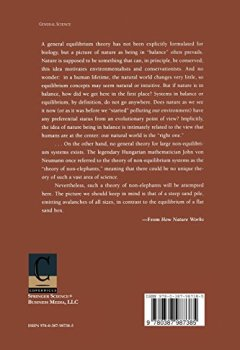 Livres Couvertures de How Nature Works: The Science of Self-Organized Criticality