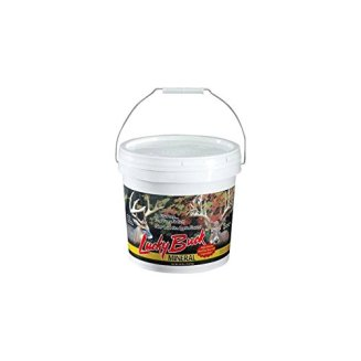 Lucky Buck -PoundM20 Apple Flavored Deer Mineral and Attractant, 20-Pound Bucket
