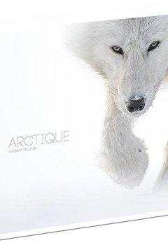 Livres Couvertures de Arctique