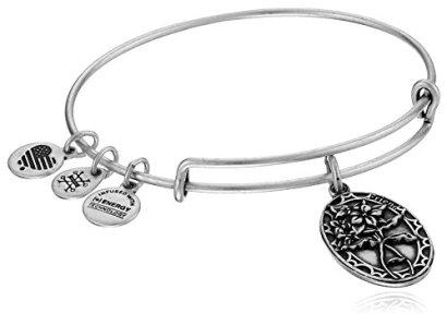 Alex-and-Ani-Because-I-love-you-Friend-II-Expandable-Bracelet