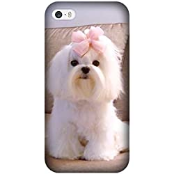 Iphone 5/5S/Iphone SE Cute Maltese Dog Pet Case, Custom Iphone 5/5S/Iphone SE Case Cover TPU Rubber