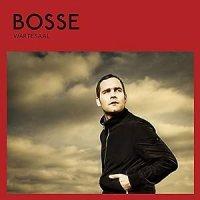 Wartesaal / Bosse