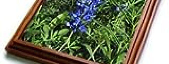 Bluebonnet – 8×8 Trivet With 6×6 Ceramic Tile