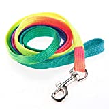 Meidus more lovely Training Colorful Flat Walking Collar Leash Lead For Pet Dog Puppy Flat