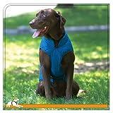Kurgo Loft Dog Jacket, Large, Blue/Orange