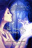 The Witchling Grows Up (Family Pendragon Book 1)