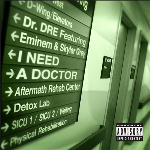 Dr Dre I Need A Doctor Official Single Cover By Sudhan Gurung