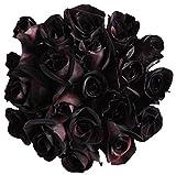 12 Stems - Fresh Cut Black Roses from Flower Explosion