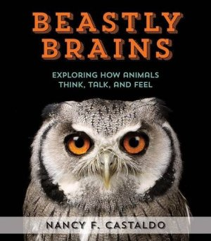 Beastly Brains: Exploring How Animals Think, Talk, and Feel by Nancy Castaldo | Featured Book of the Day | wearewordnerds.com