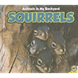 Animals in my Backyard: Squirrels