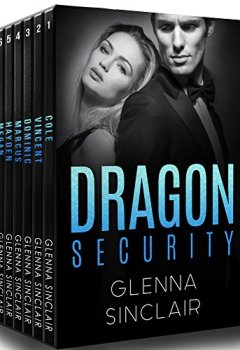 Buchdeckel von DRAGON SECURITY (English Edition)