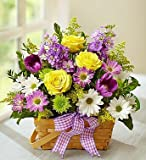 1-800-Flowers - Springtime Wishes - Medium