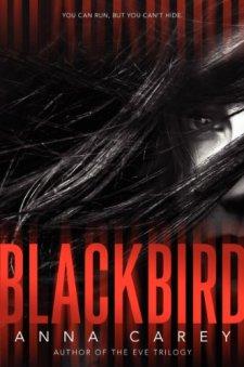 Blackbird by Anna Carey| wearewordnerds.com