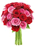 Bouquet of Long Stemmed Red and Pink Roses (Two Dozen) - The KaBloom Collection Flowers Without Vase