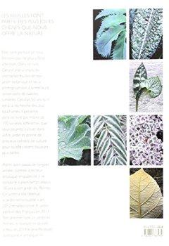 Livres Couvertures de L'Emouvante beauté des feuilles