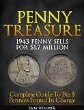 Penny Treasure (Treasure Hunting Made Easy)