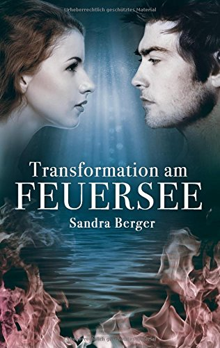 Transformation am Feuersee Book Cover
