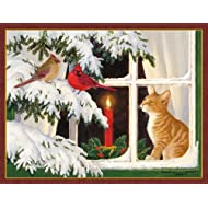 Kitten Christmas Cards A Wide Range Of Kitten Themed