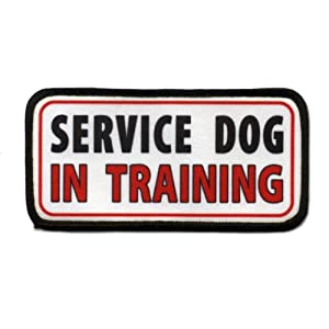 SERVICE DOG In Training Medical Alert 2.5 x 5 inch Sew-on Black Rim Patch