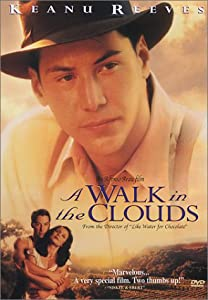 "Cover of ""A Walk in the Clouds"""