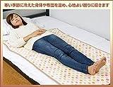 山善(YAMAZEN) 電気敷毛布(140×80cm) フランネル仕上げ YMS-F32