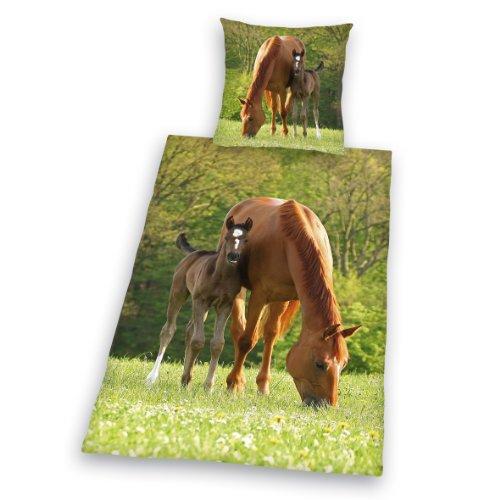 bett 200 200 von Herding online kaufen