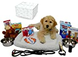 Puppy Starter Kit Bundle Deluxe Edition in Branded Gift Box - Everything You Need, All Top Name, 5 Star Brands!