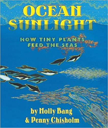 Eric of Engel Tutors recommends Ocean Sunlight, pictured here,  for children working on reading skills and ocean ecology.