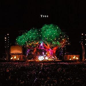 Tree(初回限定盤CD+DVD)