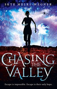 Chasing the Valley by Skye Melki-Wegner| wearewordnerds.com