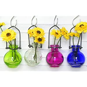 Knobs & More Colored Glass Hanging Flower Wall Vases