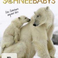 Schneebabys : das Abenteuer beginnt hier / Regie: Lucina Axelsson. - (BBC Earth)